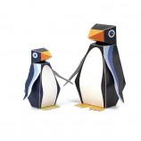 maxi_pukaca_fotos_penguin